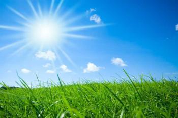 Sol y prado verde